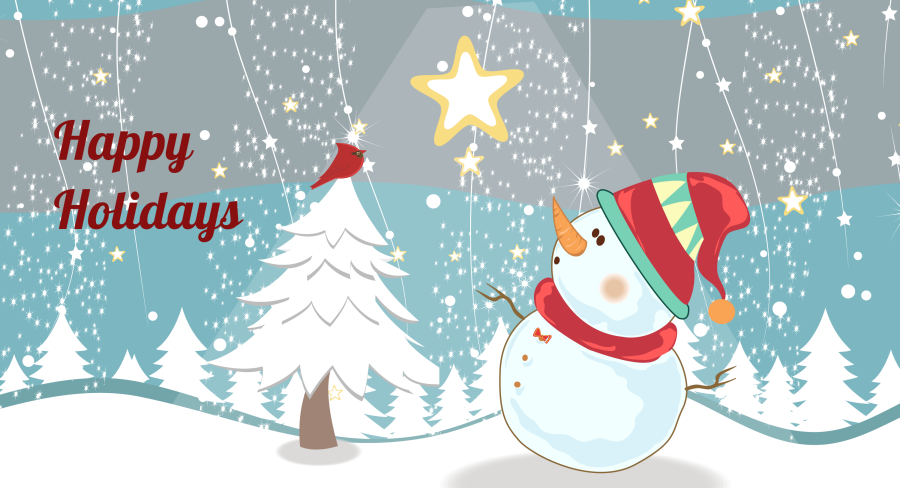 Mid Coast Vision Care Holiday Banner