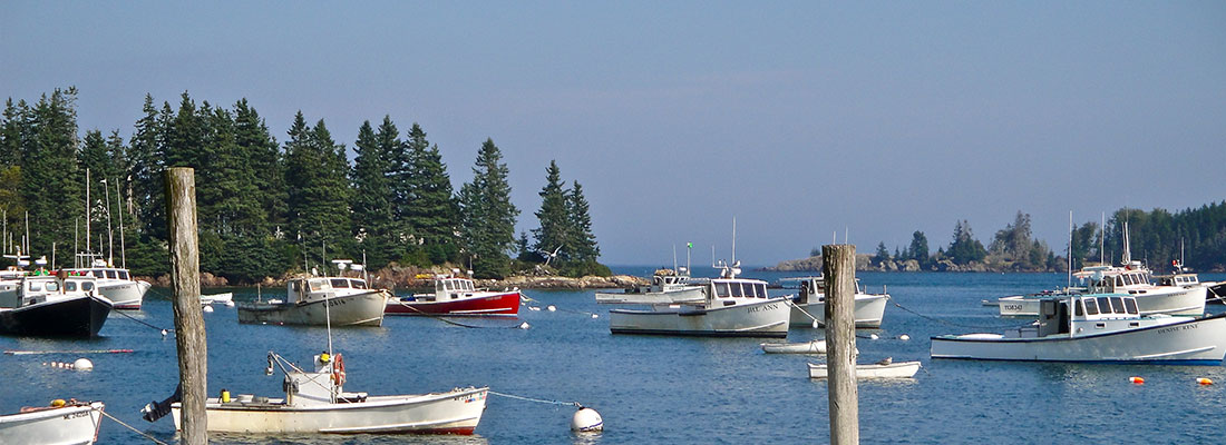 Mid Coast Vision Care Located in Beautiful Maine